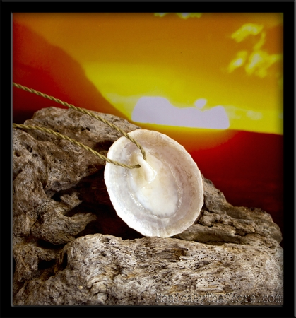 Hawaiian Sunset Opihi Shell Necklace