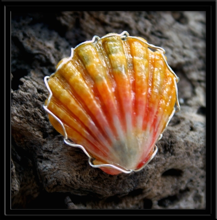 Peach Sunrise Shell Ring