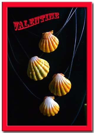Sunrise Shell Necklaces from Hawaii for Valentines Day