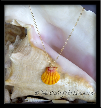 Bright Classic Hawaiian Sunrise Shell Pendant on Gold Chain Necklace