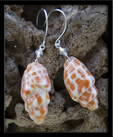 Miter Shell & Crystal Earrings