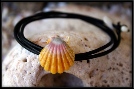 Naturalist Pink Yellow Sunrise Shell Bracelet Anklet Necklace