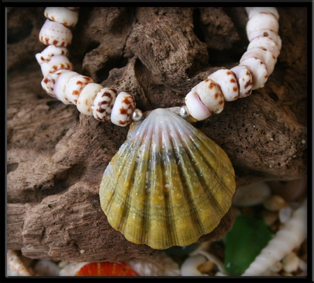 Green Sunrise Shell and Tiger Puka Shell Necklace