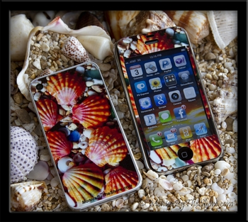Hawaiian Sunrise Shell iPhone Skins for 4g & 4s