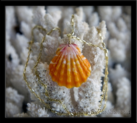 "Custom for ""Kaikea's Girl"" Sunrise Shell Gold Chain Necklace"