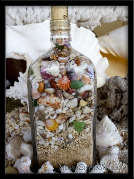 Jagermeister Beach in a Bottle Sunrise Shells & Seashells Hawaii