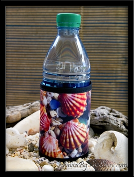 Hawaiian Sunrise Shell Coolie Cup Wrap