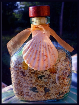 Beach in a Bottle Capt  Beachsand, Shells, Seaglass