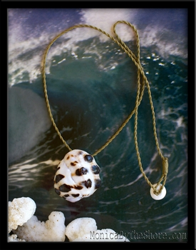 Hawaiian Spotted Mulberry Drupe Shell Necklace