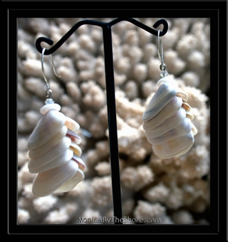 Periwinkle & Puka Shell Earrings