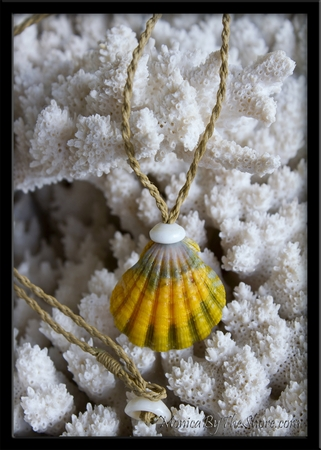 Kane Extra Large Sunrise Shell Green & Gold Cord Necklace