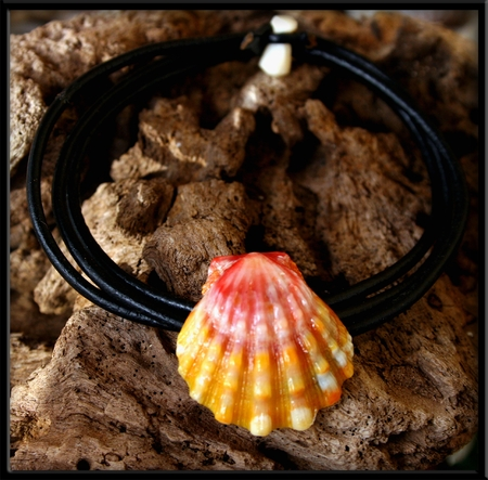Pink Yellow Hawaiian Sunrise Shell Naturalist Bracelet Anklet Necklace