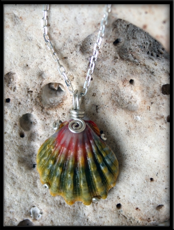 Dark Green & Pink Sunrise Shell Silver Necklace