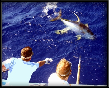 H2O ADVENTURES HAWAII SPORT FISHING CHARTERS