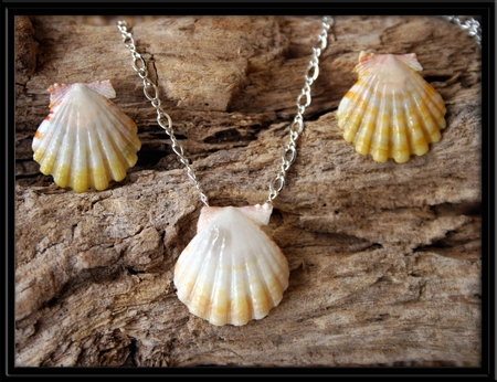 Rare White & Pale Yellow Sunrise Shell Necklace & Earrings Set