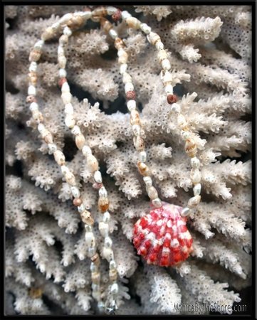 Red Sunrise Shell Pearl Rice Shell & Niihau Shell Necklace