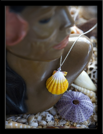Pure White & Lemon Yellow Hawaiian Sunrise Shell Silver Necklace