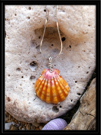 Large Soft Pink & Yellow Hawaiian Sunrise Shell Silver Necklace