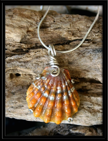 Dark Orange Hawaiian Sunrise Shell Silver Necklace