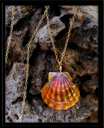 Deep Peach Pink Sunrise Shell & Gold Chain Necklace