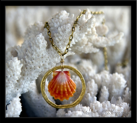 Papaya Hawaiian Sunrise Shell in Gold Vermiel Hoop Long Cable Chain Necklace