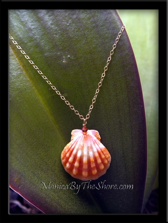 Creamy Orange Sherbert Sunrise Shell Gold Chain Necklace