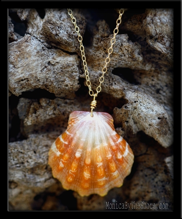 Melon & White Sunrise Shell & Gold Chain Necklace