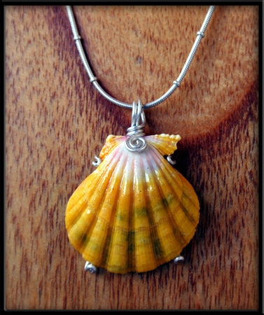 Extra Large Yellow White Green Sunrise Shell Silver Necklace
