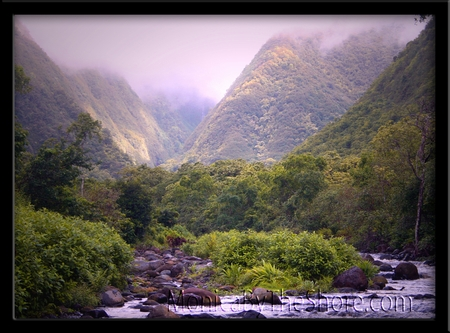 Waipio Valley Tranquil Stream Big Island