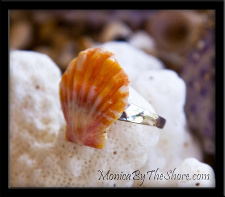 Toe Ring!  Papaya Colored Hawaiian Sunrise Shell Sterling Silver