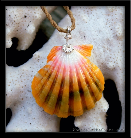 Multi Color Hawaiian Sunrise Shell Cord Necklace