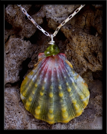 Rare Green & Pink Sunrise Shell Tourmaline & Sterling Silver Chain Necklace