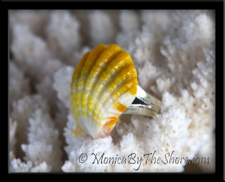 Bright Yellow & White Hawaiian Sunrise Shell Balinese Silver Ring