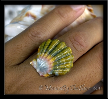 Moonrise Rainbow Hawaiian Sunrise Shell Balinese Silver Ring