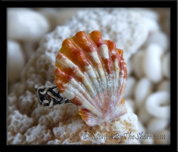 Crisp White & Deep Orange Hawaiian Sunrise Shell Pinky Ring