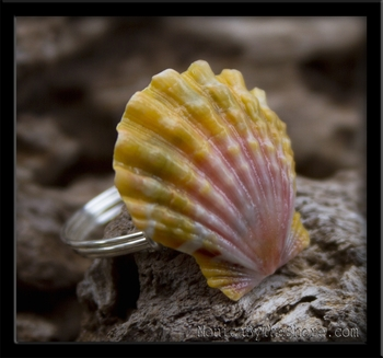 Pink Yellow & Green Calico Hawaiian Sunrise Shell Silver Ring