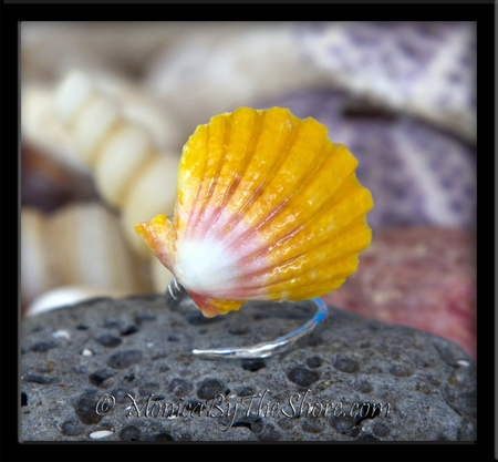 Sexy Slant Design Hawaiian Classic Sunrise Shell Wrap Ring
