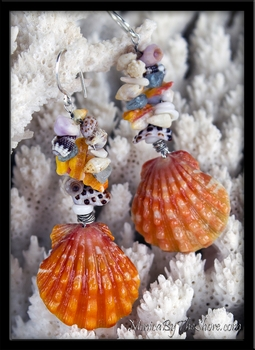Fantasy Seashells Hawaiian Sunrise Shell & Aquamarine Earrings