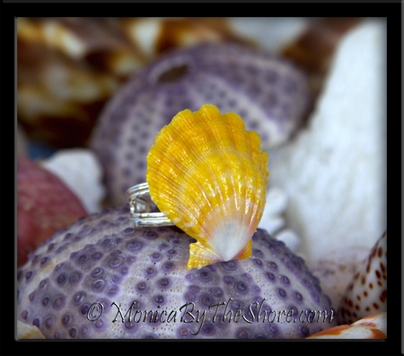 Lemon Yellow Hawaiian Sunrise Shell Adjustable Sterling Silver Ring