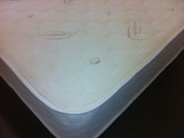 All Natural Dunlop / Talalay Combination Latex Mattress