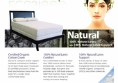 """the Natural"" Organic Cotton w/ 8"" All Natural Talalay Latex"