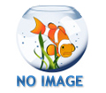 Laguna All Season Goldfish & Koi Food, Large Floating Pellet, 2.2 lbs