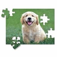 Melissa and Doug 30 piece Golden Retriever Puppy Cardboard Jigsaw - click to enlarge