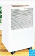 DeLonghi DE40GM 40 Pint Dehumidifier - click to enlarge