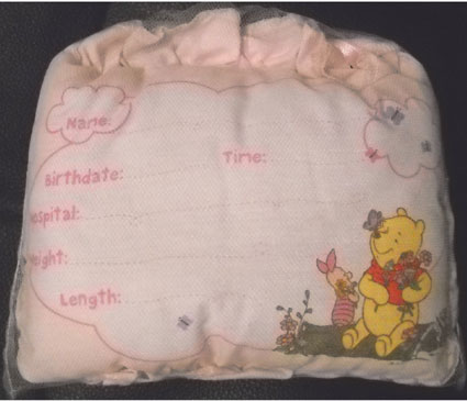 Disney's Winnie the Pooh Birth Announcement Door Pillow with Pen