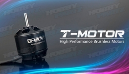 High Performance Brushless T-Motor AS2212 1250kv for Airplane