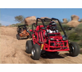 "<B><Font Color=""Black""><Font Size=""4"">150cc to 200 cc Adult Size /  Go Karts / Dune Buggies</Font></Font></B>"