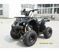 Cyclone Atv 110 Utility/Sport Quad from Motobuys.com