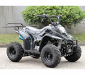 Regency Mountain Cat RS Atv 110cc