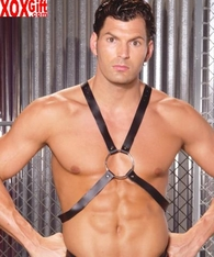 Leather adj harness EM L9135
